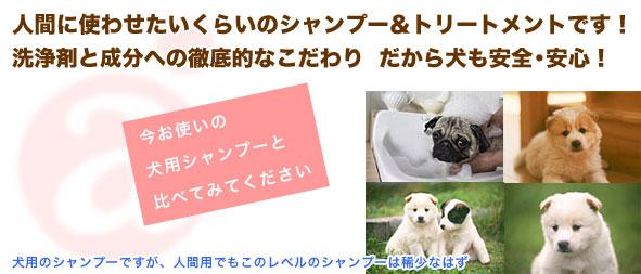 洗浄剤と成分への徹底的なこだわり だから犬も安全・安心